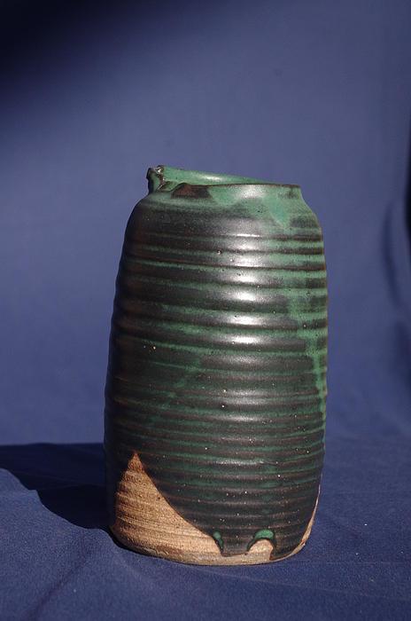 Green Vase Print by Rick Ahlvers
