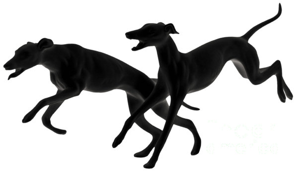 Greyhounds Travelling At 45 Mph Print by Christine Till