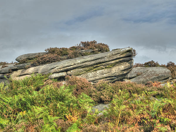 Gritstone Outcrop - Colour Print by Steev Stamford