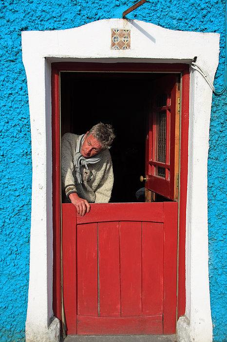 Half Door Print by Aidan Moran