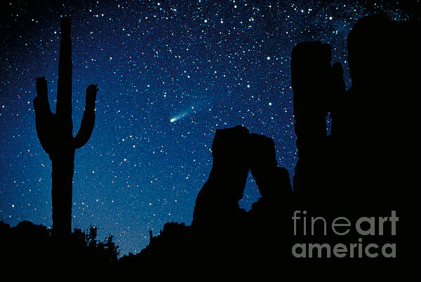 Halley's Comet Print by Frank Zullo