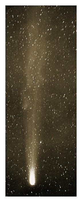 Halley's Comet In May 1910 Print by Detlev Van Ravenswaay