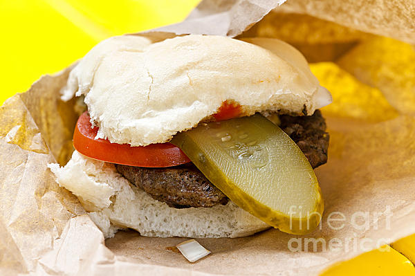 Hamburger With Pickle And Tomato Print by Elena Elisseeva