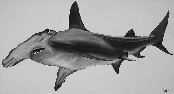 Hammerhead Shark Print by Nick Flavin