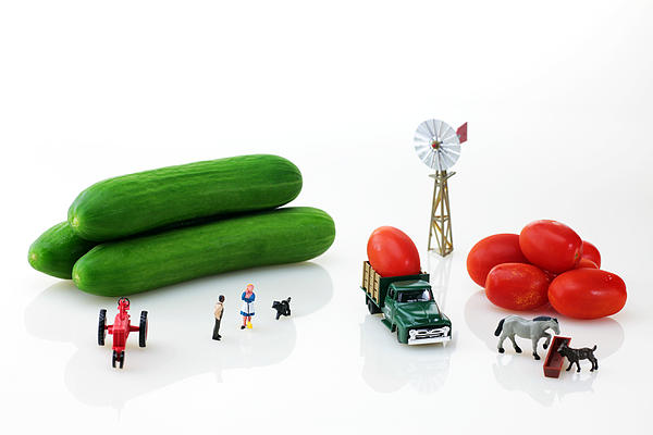 Happy Farm Print by Paul Ge