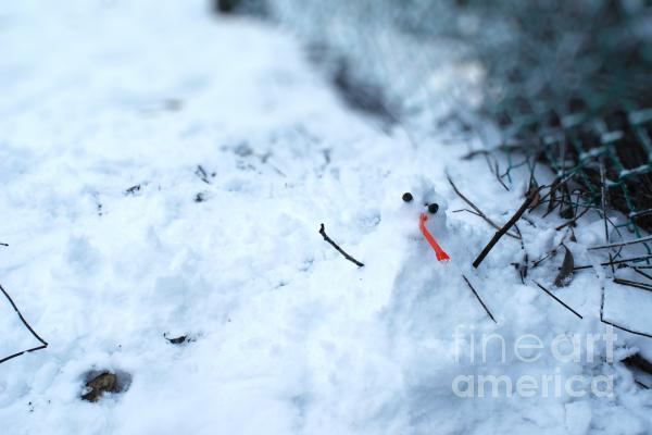 Happy Snow Man Photograph