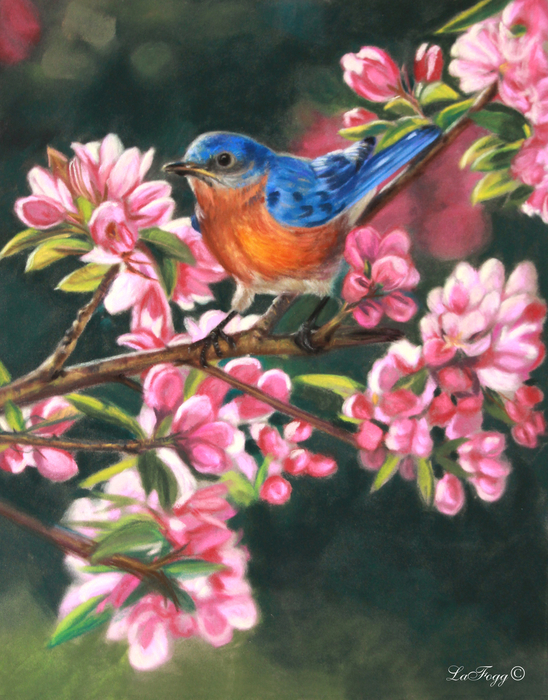 Deb LaFogg-Docherty - Harbingers of Spring