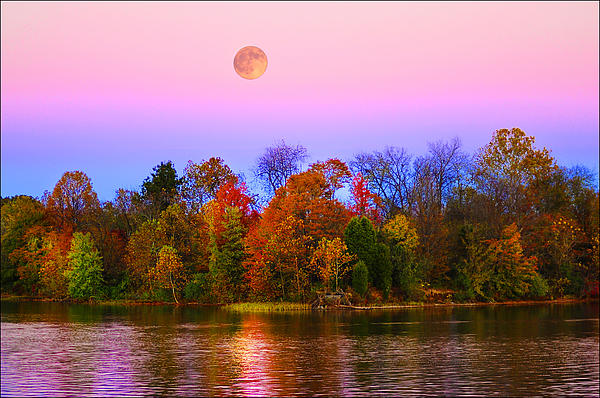 Randall Branham - Harvest Moon from the Deck at RFLMarina