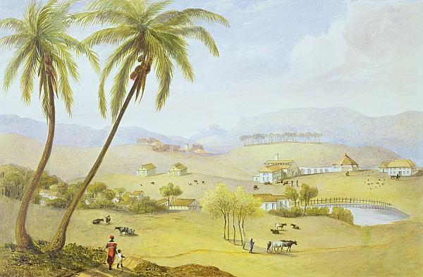 Haughton Court - Hanover Jamaica Print by James Hakewill