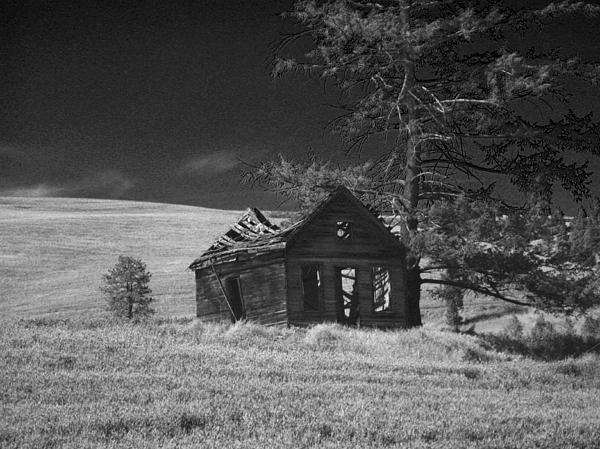 Haunted House Print by Anne Mott
