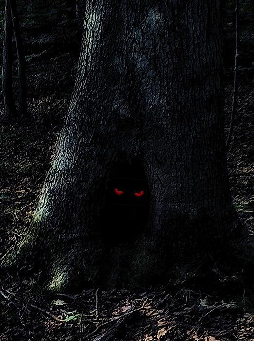 Haunted Tree Print by Walt Stoneburner