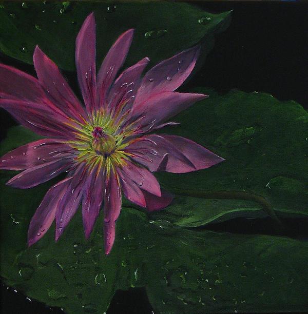 Hawaiian Water Lily - Pink Print by Sherry Robinson