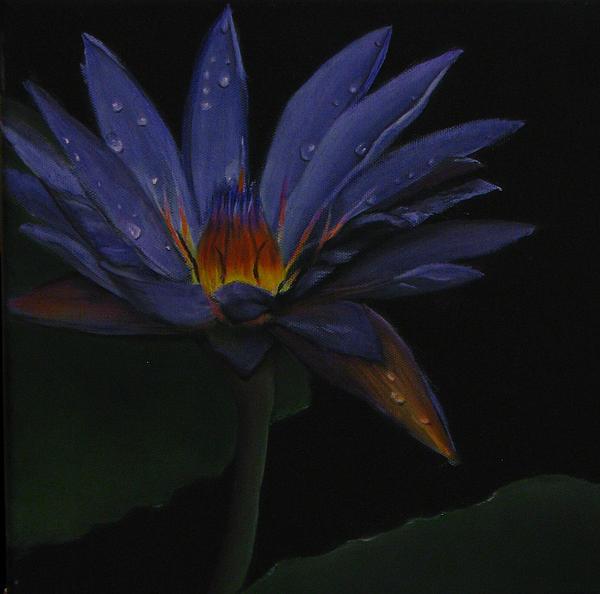 Hawaiian Water Lily - Purple Print by Sherry Robinson