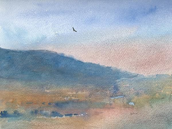 Hawk At Sunset Over Stenbury Down Print by Alan Daysh