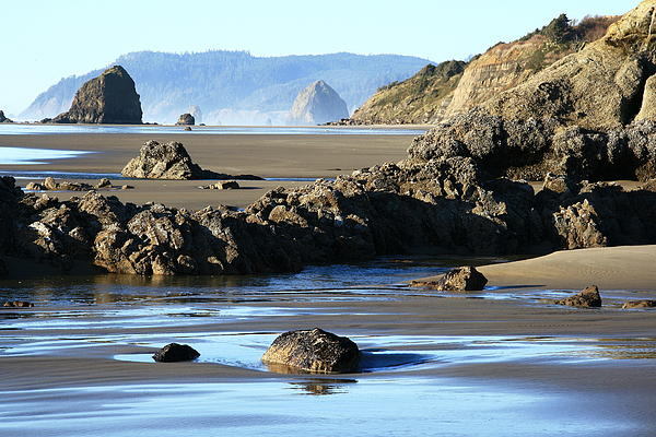 Haystack Rock From Arcadia Beach Print by Steven A Bash