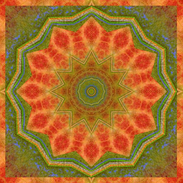 Healing Mandala 14 Print by Bell And Todd