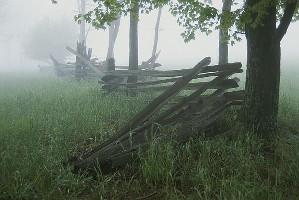 Heavy Fog Hangs Over Split Rail Fences Print by Stephen St. John