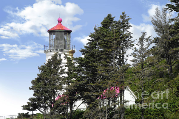 Heceta Head Lighthouse - Oregon's Iconic Pacific Coast Light Print by Christine Till
