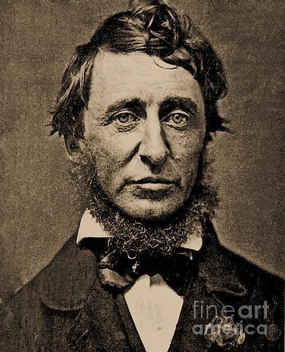 Pg Reproductions - Henry David Thoreau