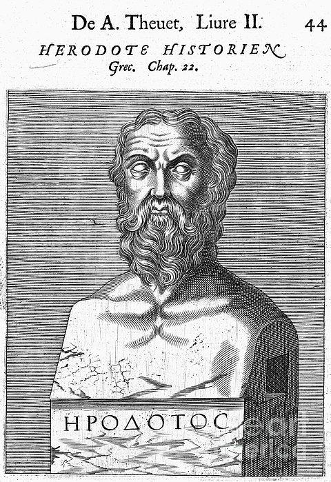 Herodotus Print by Granger