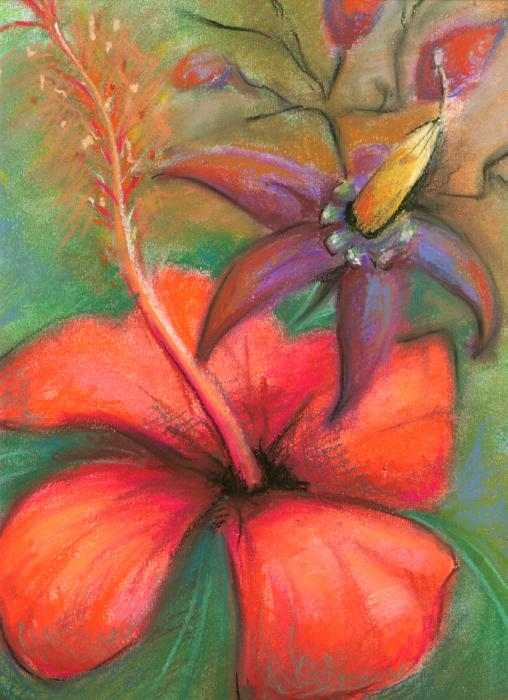 Hibiscus Painting  - Hibiscus Fine Art Print
