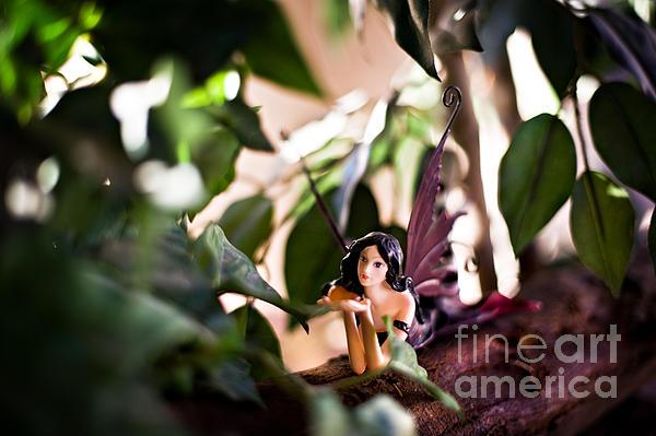 Hidden Fairy On A Log Print by Angelina Cornidez