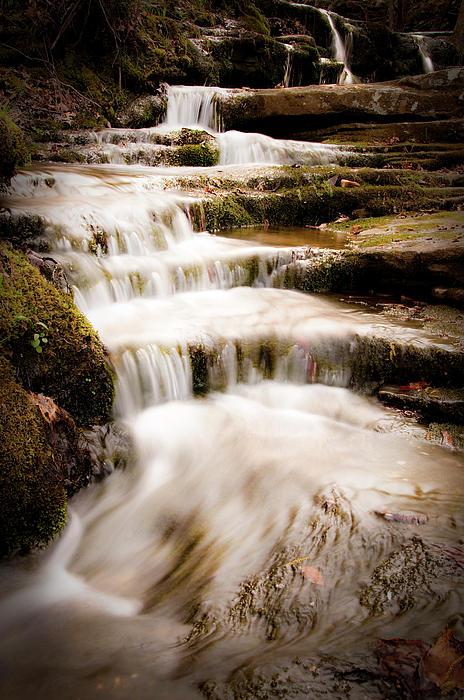 Hidden Falls Print by Tamyra Ayles