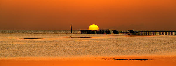 Hiding Sun Print by Sun Travels