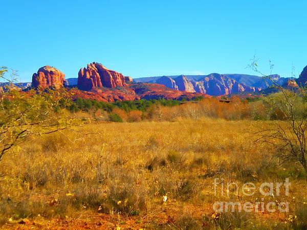 Diana Cox - High Desert Meadow