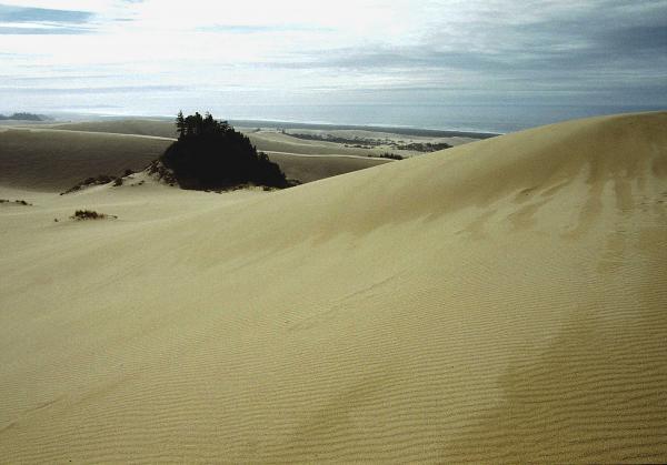 High Dunes 1 Print by Eike Kistenmacher