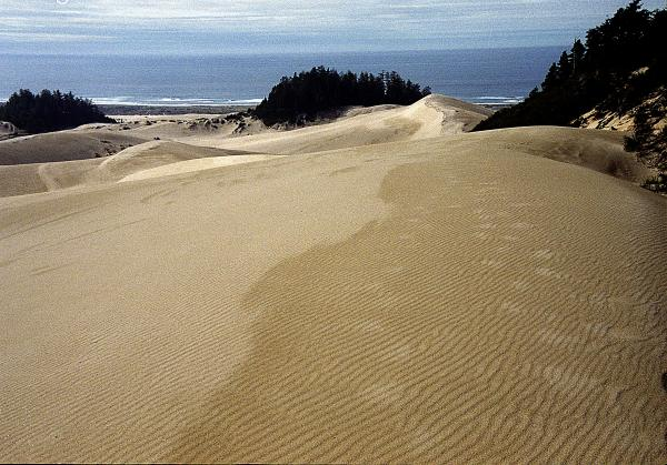 High Dunes 2 Print by Eike Kistenmacher