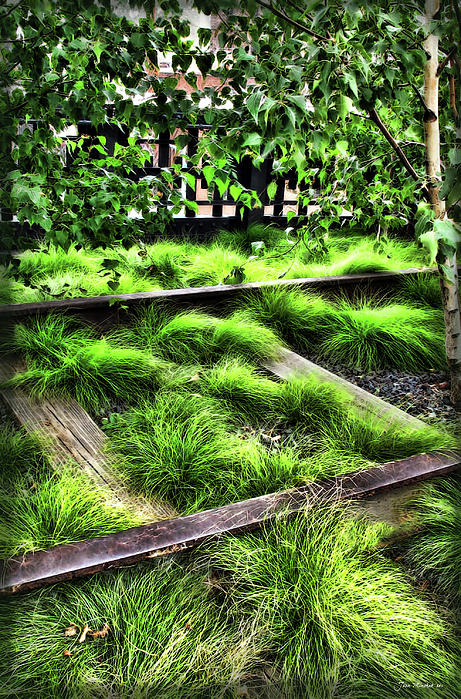 Joan  Minchak - High Line NYC Railroad Tracks