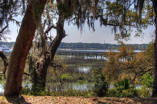 Hilton Head Scenic Print by Keith Wood