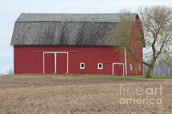 Hip roof barn print by stephanie kripa for Hip roof barns