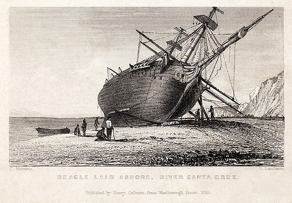 Hms Beagle Ship Laid Up Darwin's Voyage Print by Paul D Stewart