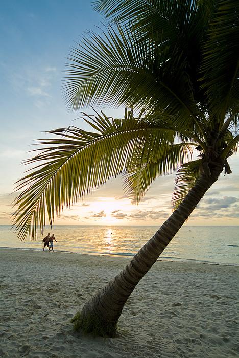 Honduras, Roatan Island,  West Bay Print by Richard Nowitz