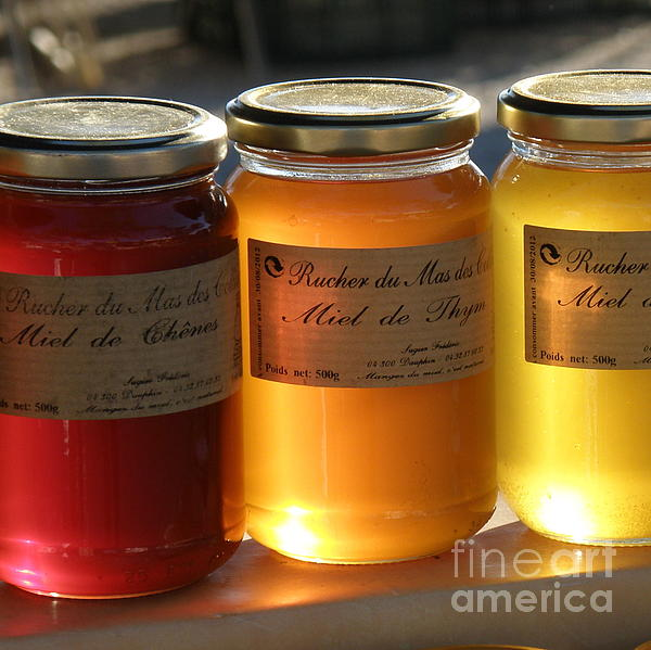 Honey Print by Lainie Wrightson