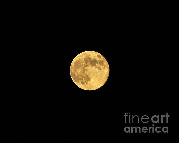 Honey Moon Print by Al Powell Photography USA