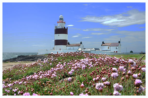 Ernie Watchorn - Hook Lighthouse in springtime.