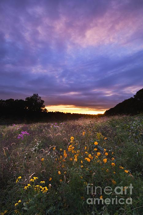 Hoosier Sunset - D007743 Print by Daniel Dempster