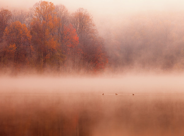 Hopewell Lake, French Creek State Park Print by Michael Lawrence Photography