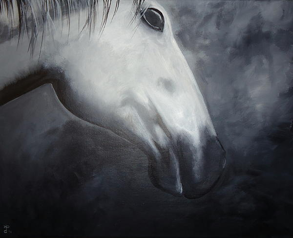 Horse Print by Diana Prickett