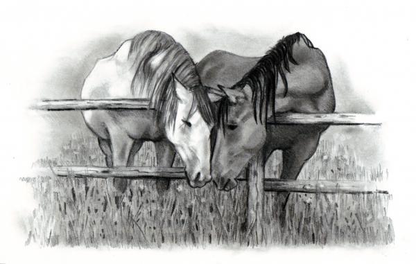 http://images.fineartamerica.com/images-medium/horse-lovers-joyce-geleynse.jpg