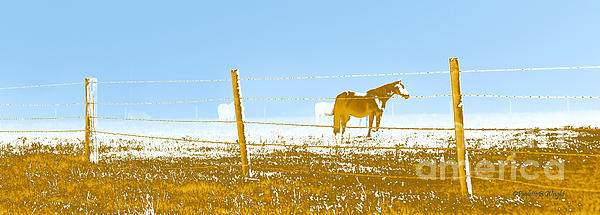 Horse Pasture Revblue Print by Paulette B Wright