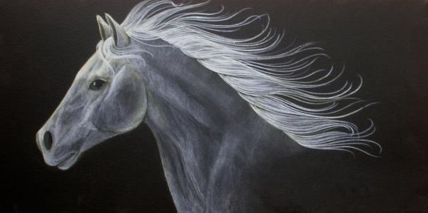 Horse Print by Susan Kissinger