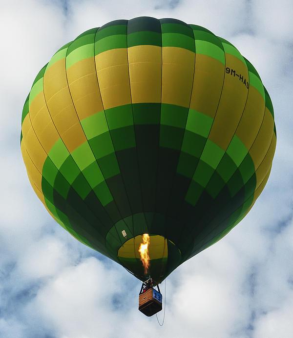 Hot Air Balloon Print by Zoe Ferrie