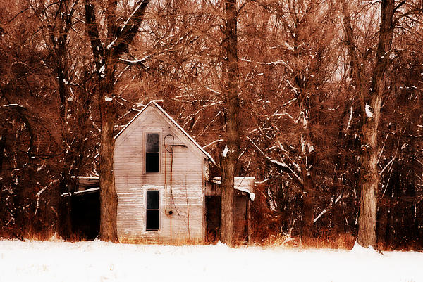 House In The Woods Print by Cheryl Helms