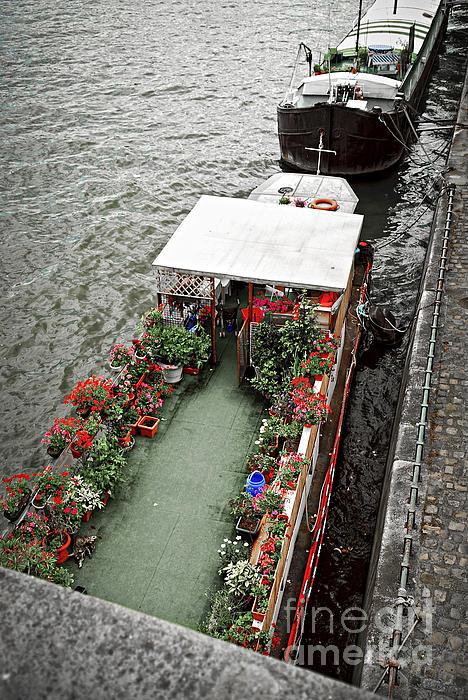 Houseboats In Paris Print by Elena Elisseeva