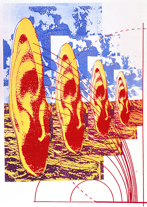 Human Hearing Print by Hans-ulrich Osterwalder