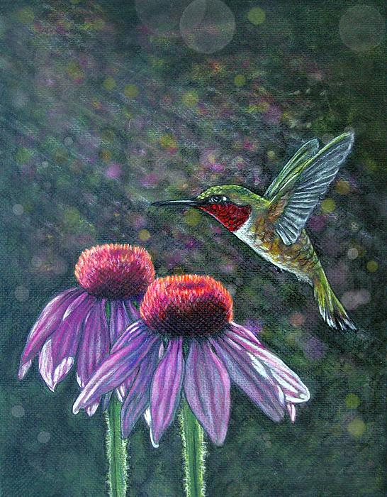Diana Shively - Hummingbird and cone flowers